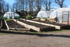 ready plantation beds 1 small