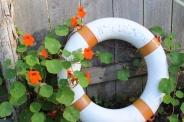 lifeguard ring small