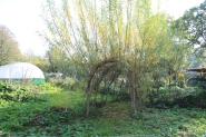 tree dome small