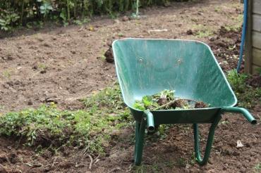 wheelbarrow