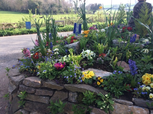 Glyn's flowerbed small